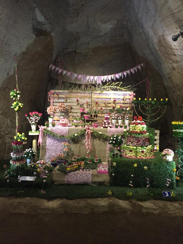 1er premio certamen internacional la rosa de Francia en Doue de la Fontaine